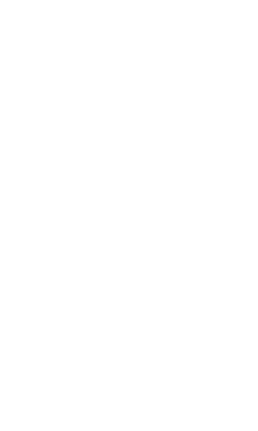 Safety & PPE | Harnesses, Lanyards, SRL, Anchor Points, Rigid Rail, Guardrails, Work Platforms, Ladders