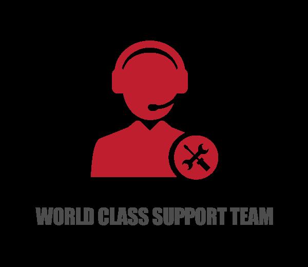 world class support team